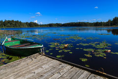 Rowing boat on a lake Royalty Free Stock Photos