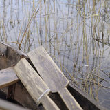 Rowing Boat And Oars Stock Image