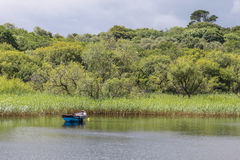 Rowing boat on quiet lake Stock Images