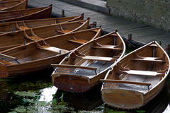 Rowing Boats. Moored on a river Stock Images