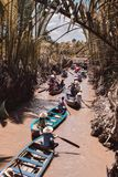Rowing boats with tourists flowing down mangroves at Mekong Delta royalty free stock photography