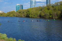 Rowing competitions. Rowers in training in the city pond Stock Photos