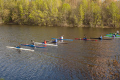 Rowing competitions. Rowers in training in the city pond Royalty Free Stock Photos