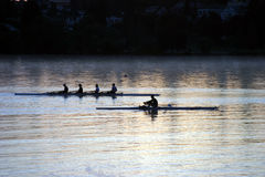 Rowing de la gente en la salida del sol Imagenes de archivo