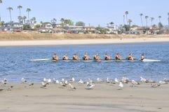 Rowing del equipo Imagen de archivo