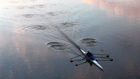 Rowing at dusk - leaving wonderful waving pattern stock video