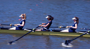 Rowing game Royalty Free Stock Photo