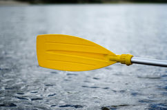 Rowing, holding a kayak paddle Royalty Free Stock Images