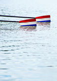 Rowing oars. Two rowing oars with red, white and blue blades touching the water, prior to the start of a rowing race Royalty Free Stock Image