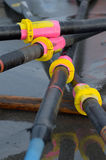 Rowing oars. Rowing boat oars stacked on the shore Royalty Free Stock Image