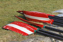 Rowing Oars. On the grass Royalty Free Stock Images