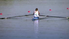 A rowing race stock video footage