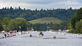 Rowing race at Henley Regatta stock image