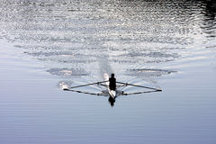 Rowing at the river Arno in Florence, Italy Stock Photos
