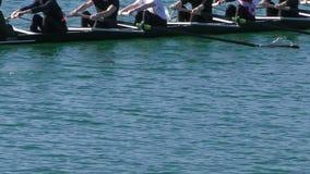Rowing. Rowers in eight-oar rowing boats, slow motion full HD video stock video