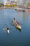Rowing in Salthouse Dock, Liverpool. Royalty Free Stock Photos