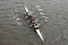 Rowing sport in river Royalty Free Stock Photo