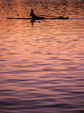 Rowing sunset Royalty Free Stock Image