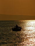 Rowing in sunset 3 royalty free stock photography
