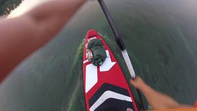 Rowing on a SUP board. Of the first person. The camera is on a paddle stock footage