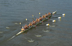 Rowing Team. Rowing ahead during a boat-race on the River Vltava in Prague, Czech Republic royalty free stock images