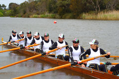 Rowing team Royalty Free Stock Image