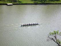 Rowing Team Practice. A rowing team has an early morning practice on a river Stock Photography