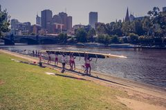The rowing team prepare to start with their boat on the bank of Yarra river. 4PM, 25 February, 2017.  royalty free stock photo