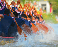 Rowing team race Royalty Free Stock Photos