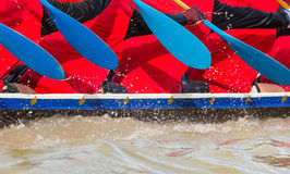 Rowing team race Stock Photography