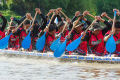 Rowing team race Royalty Free Stock Photo