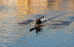 Rowing team Stock Photos