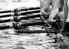 Sweep Rowing. Hands of an Eight. A mens rowing team royalty free stock photography
