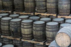 Rows of Aging Rum Barrels. Rows of wooden fermentation barrels stacked in a distillery royalty free stock photography
