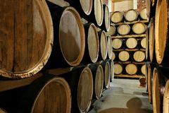 Rows of alcohol barrels in stock. Distillery. Cognac, whiskey, wine, brandy. Alcohol in barrels stock images