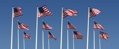 Rows of american flags Royalty Free Stock Photography