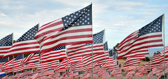 Rows of American Flags. Annual tribute at the Pepperdine University, Malibu, California. 2,977 flags in total representing life lost in the 9/11 attacks royalty free stock image