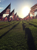 Rows of American Flags Stock Photo