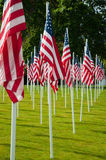 Rows of American flags at the park Royalty Free Stock Photos