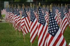 Rows of American flags, remembering 9/11. Stock Image