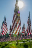 Rows of American Flags Stock Photos