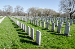 Rows of anonymous military headstones Stock Photo