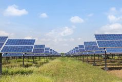 Rows array of polycrystalline silicon solar cells in solar power plant turn up skyward absorb the sunlight from the sun use light Stock Photos