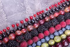 Rows of assorted fruits and berries: sweet cherry, bluberries, r royalty free stock photography