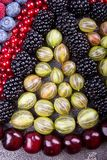 Rows of assorted fruits and berries: sweet cherry, bluberries, r. Aspberries, red and black currant, blackberries. Healthy eating food concept. Top view stock images