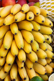 Rows of bananas Royalty Free Stock Images