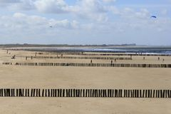 Rows of beach poles - breakwaters along the dutch coast in cadzand. Lots of rows of breakwaters at the beach with low tide along the dutch coast wih a blue sky Royalty Free Stock Photography