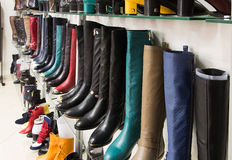 Rows of beautiful female boots on store shelves. Stock Photography