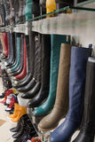 Rows of beautiful female boots on store shelves. Stock Image