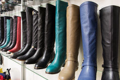 Rows of beautiful female boots on store shelves. Royalty Free Stock Image